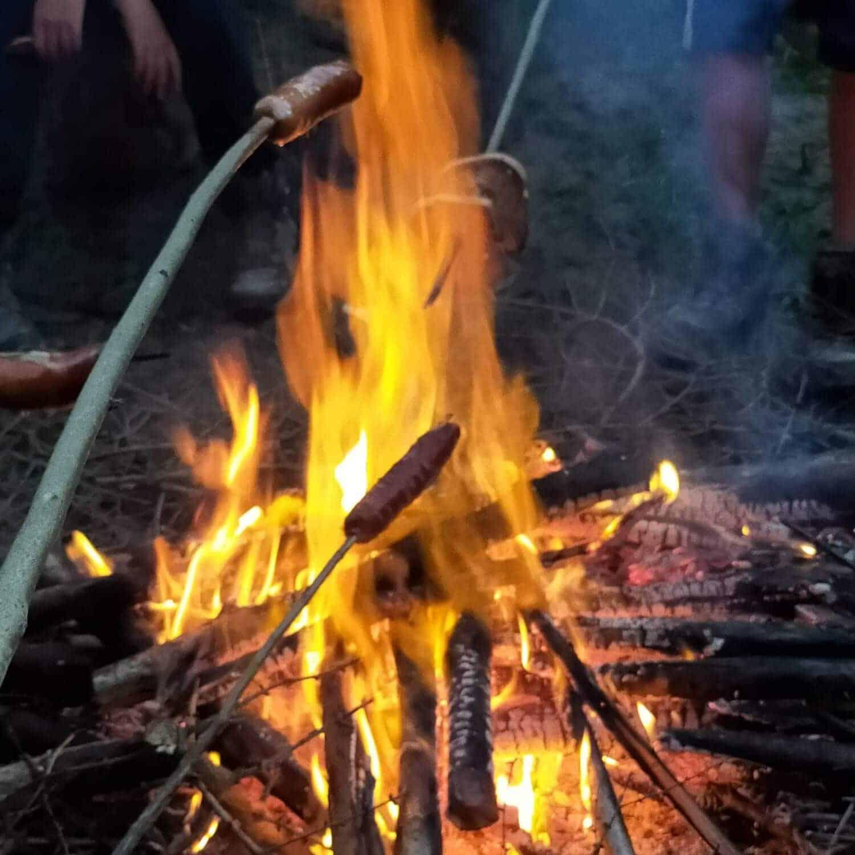 pieczenie kiełbas na ognisku w głębi lasu