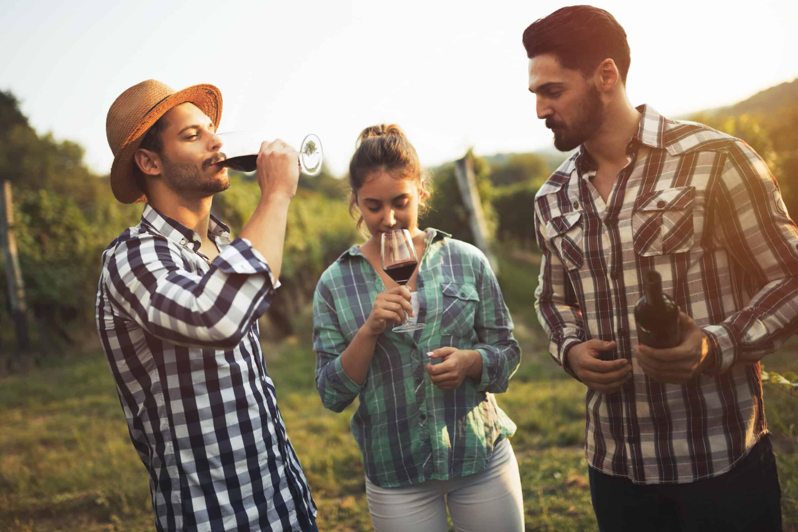 trójka turystów z kieliszkami wina